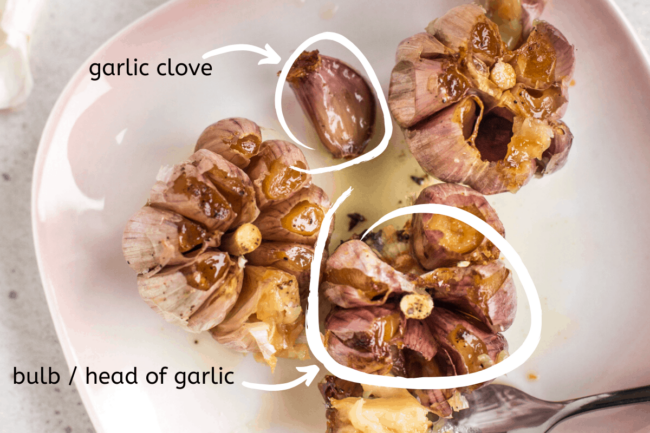Diagram to show the difference between a garlic clove and a head / bulb of garlic.
