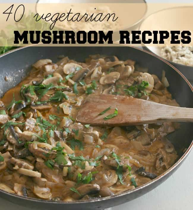 40 vegetarian mushroom recipes