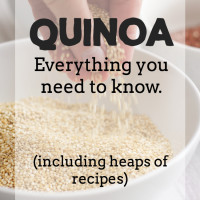 Quinoa: Everything you need to know!