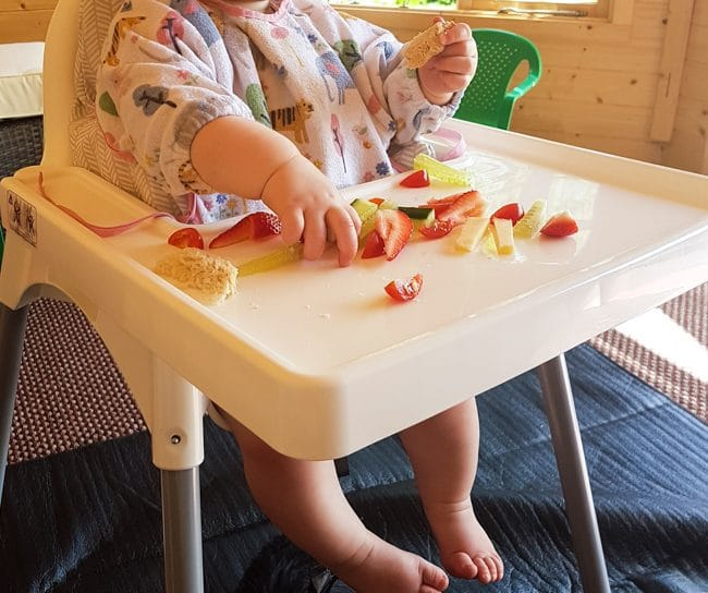 BLW baby eating at an IKEA Antilop high chair wearing a long-sleeved bib