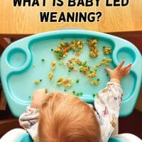 BLW for Beginners: What is Baby Led Weaning?