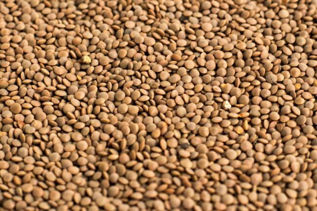 A sea of brown lentils filling the image.